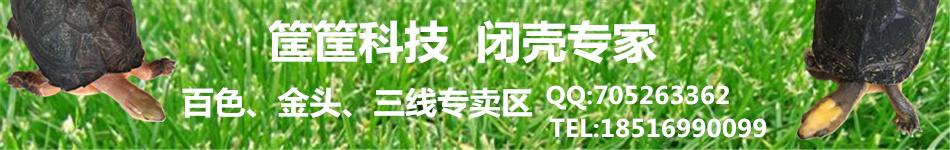 北京老筐筐
